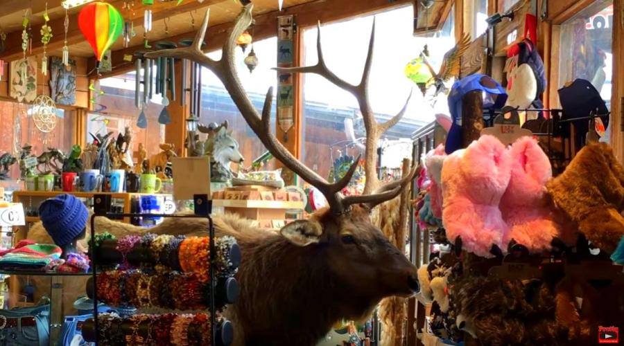 Funky Moose, Estes Park - Co